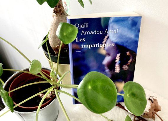 """photo chronique littéraire """"les impatientes"""" de Djaïli Amadou Amal"""